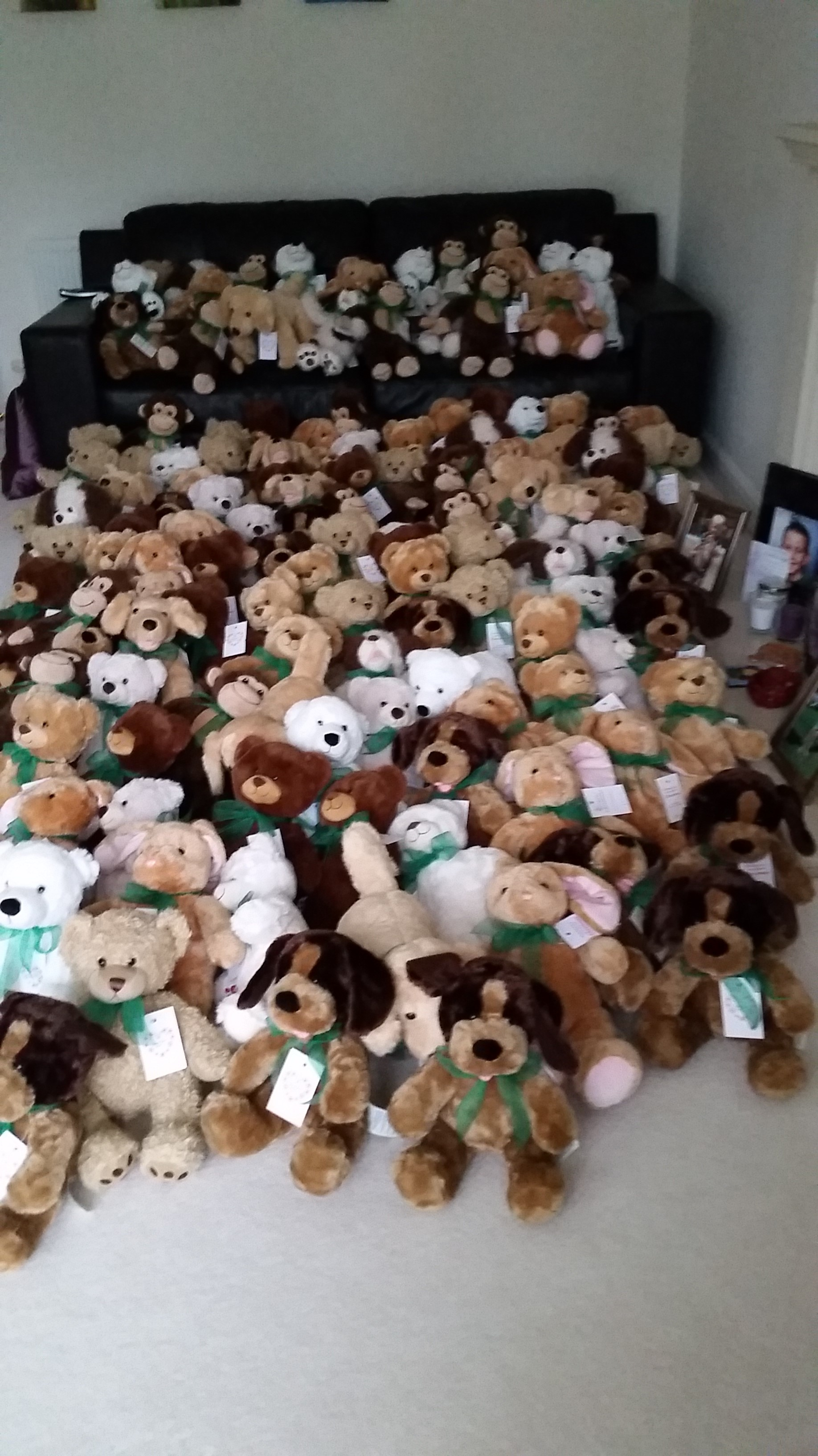 Teddies_ready.jpg